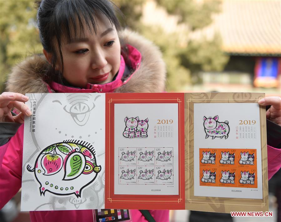 A staff member presents a set of special zodiac stamps for the lunar year of the Pig in Beijing, capital of China, Jan. 5, 2019. China Post on Saturday issued a set of special zodiac stamps in honor of 2019 Chinese Lunar New Year, or the Year of the Pig. The Year of the Pig starts from Feb. 5, 2019. (Xinhua/Li He)