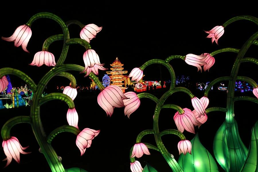 LED lanterns of lotuses are featured at the festival, together with some 40 LED installations spanning 7 acres of Snug Harbor Cultural Center & Botanical Garden, including models of Chinese dragons, porcelain and pandas. They were accompanied by live performances of traditional Chinese dance and art. (Photo/Chinaculture.org)
