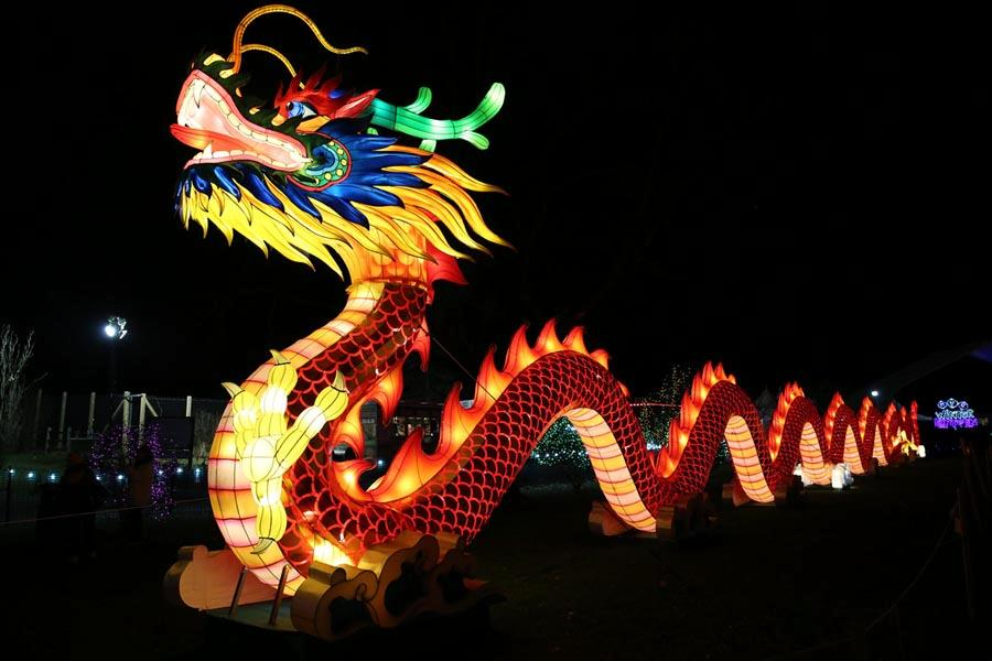 dragon-shaped LED installation lights up the Snug Harbor Cultural Center & Botanical Garden in New York, Jan. 4, 2019.  (Photo/Chinaculture.org)