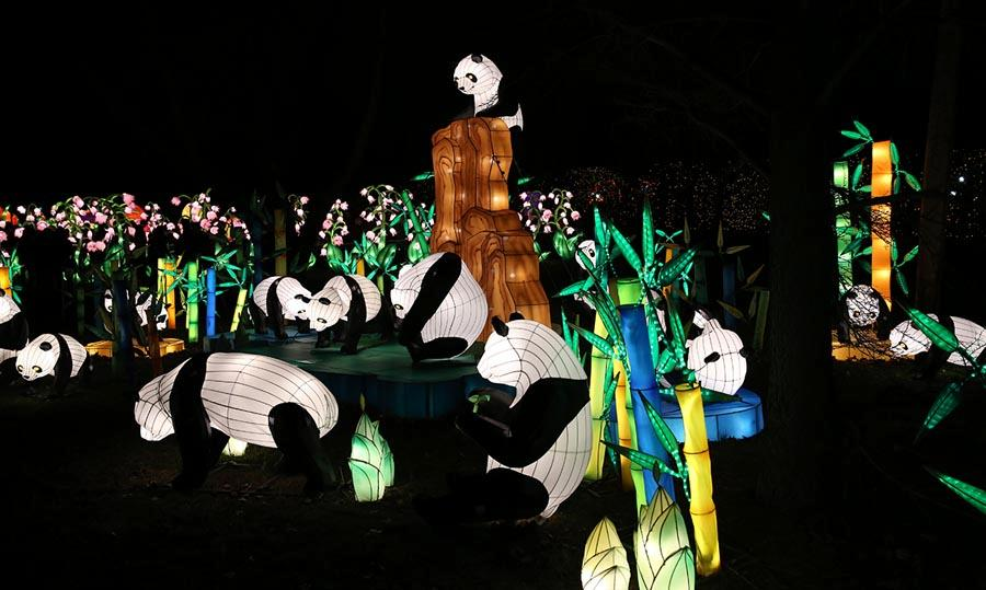 LED installations of Chinese porcelain and art are pictured at the first Winter Lantern Festival in New York on Nov. 28, 2018.  (Photo/Chinaculture.org)