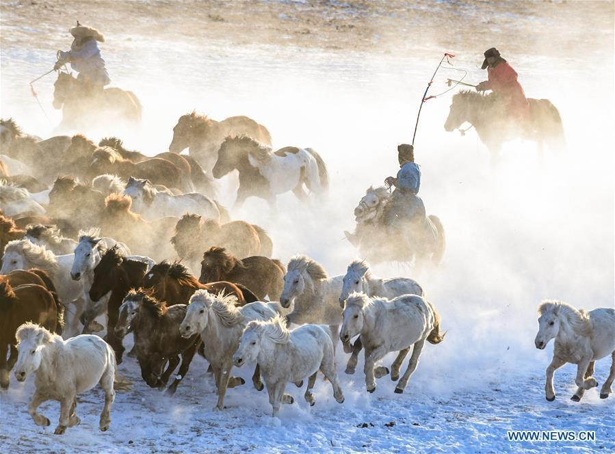 Herdsmen drive horses on the snow-covered grassland in Hexigten Banner of Chifeng City, north China\'s Inner Mongolia Autonomous Region, Jan. 6, 2019. Inner Mongolia greets a peak tourism season in winter recently. (Xinhua/Peng Yuan)