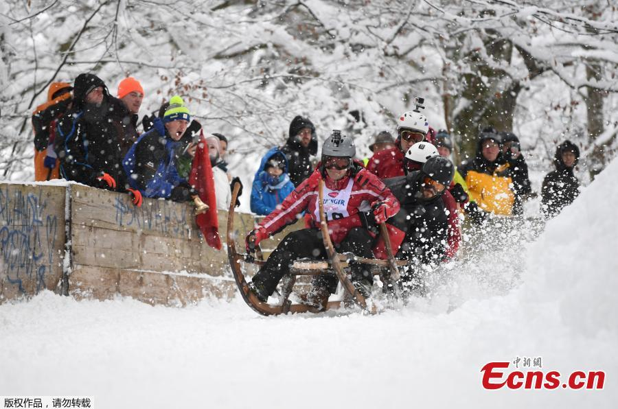 Participants of the 50th horn sled competition race down the mountain and fall off their sledge in the Bavarian town of Garmisch-Partenkirchen, Germany, Jan. 6, 2019. (Photo/Agencies)