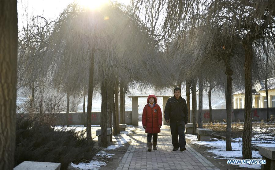 Hu Zhisheng and his student Sun Xiaofeng walk on the road after school in Yantai Village of Lianhua Township in Tieling City, northeast China\'s Liaoning Province, Jan. 7, 2019. Located in a remote mountain village, most students of Yantai school had transferred to other places outside the mountain. Sun Xiaofeng, a third grade student, became the only student of the school in September last year taught by Hu Zhisheng, the only one faculty of Yantai primary school. (Xinhua/Yao Jianfeng)
