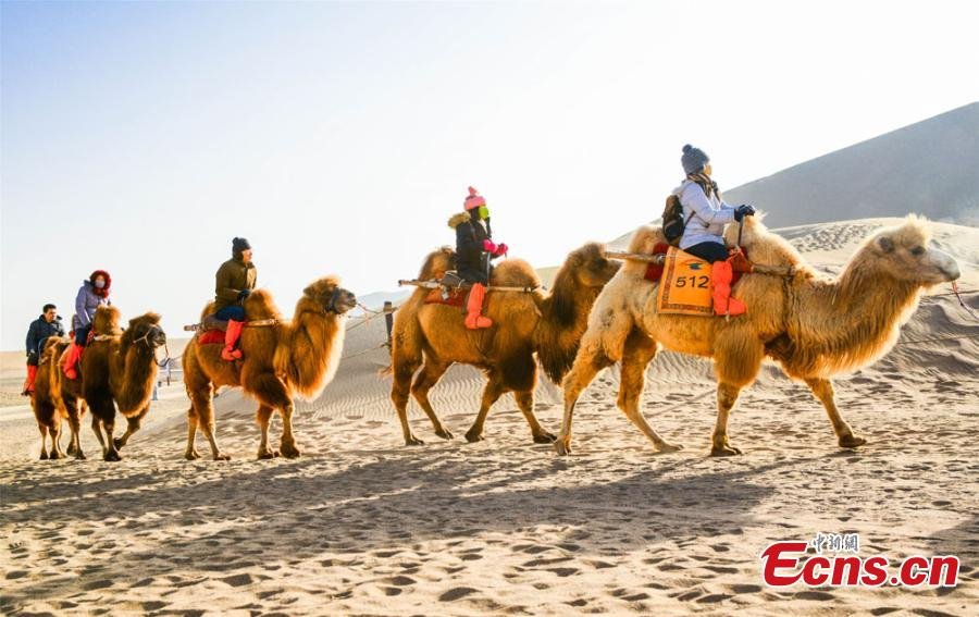 Tourists from across the country brave the cold to visit the Crescent Spring and Singing-Sand Dunes scenic spot in Dunhuang City, Northwest China\'s Gansu Province. Riding a camel across the desert has been popular among tourists. (Photo: China News Service/Wang Binyin)