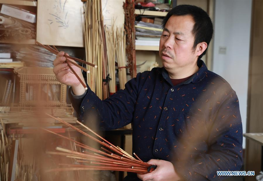 Craftsman Zhao Runsheng chooses sorghum straws to make handicrafts at a studio in Jingxing mining area of Shijiazhuang City, capital of north China\'s Hebei Province, Jan. 10, 2019. Sorghum straw handicrafts with various shapes in Jingxing Mining Area are a provincial intangible cultural heritage and a typical folk art in Hebei Province. (Xinhua/Liang Zidong)
