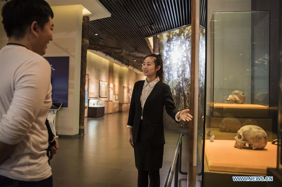 A guide shows a human skull fossil discovered at Jalainur District at Jalainur Museum in Manzhouli, north China\'s Inner Mongolia Autonomous Region, Jan. 8, 2019. A carbon-14 dating study on four skull samples discovered at Jalainur District, Manzhouli City in northern China\'s Inner Mongolia Autonomous Region confirmed the earliest sample was around 10,113 years old, researchers announced Saturday in Beijing. Jalainur, a county-level district under the jurisdiction of Manzhouli City, is located near Russia and Mongolia. Starting in March 2018, the study was jointly conducted by researchers from Peking University (PKU) and the school of archaeology at Jilin University. (Xinhua/Darhan)