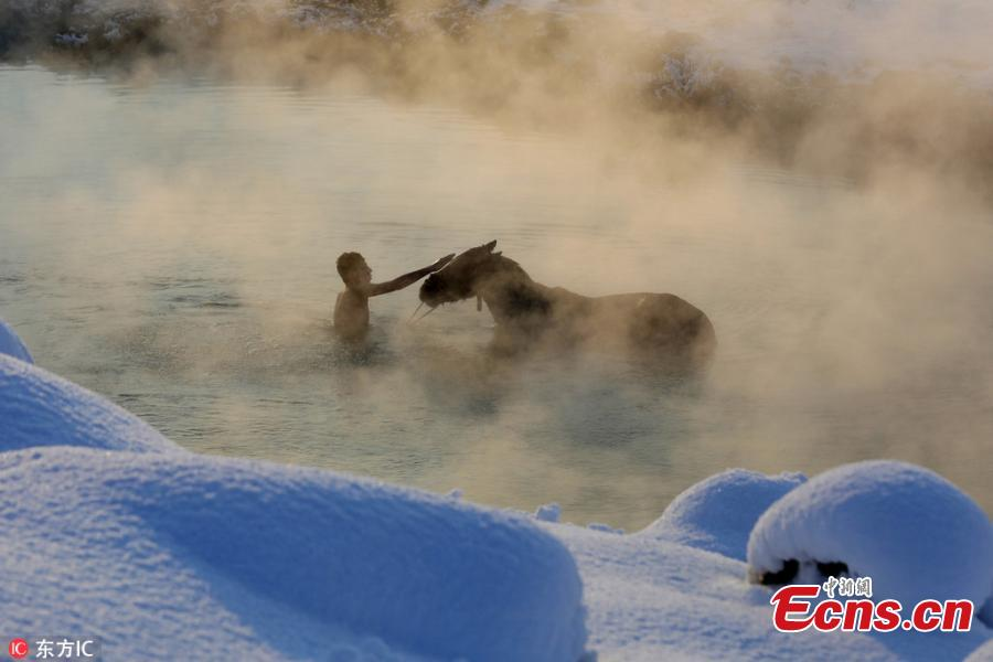 A horse bathing in a thermal spring that is around 40 degrees Celsius in the village of Budakli in Guroymak district, Bitlis, Turkey, Jan. 11, 2019. Despite the freezing cold, villagers bring their horses and water buffalos to thermal springs to wash and care them. (Photo/IC)