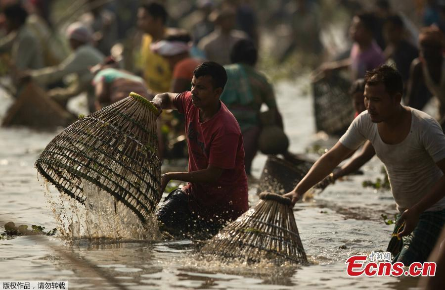 Indian villagers participate in community fishing as part of Bhogali Bihu celebrations in Panbari village, some 50 kilometers east of Gauhati, India, Jan. 14, 2019. \
