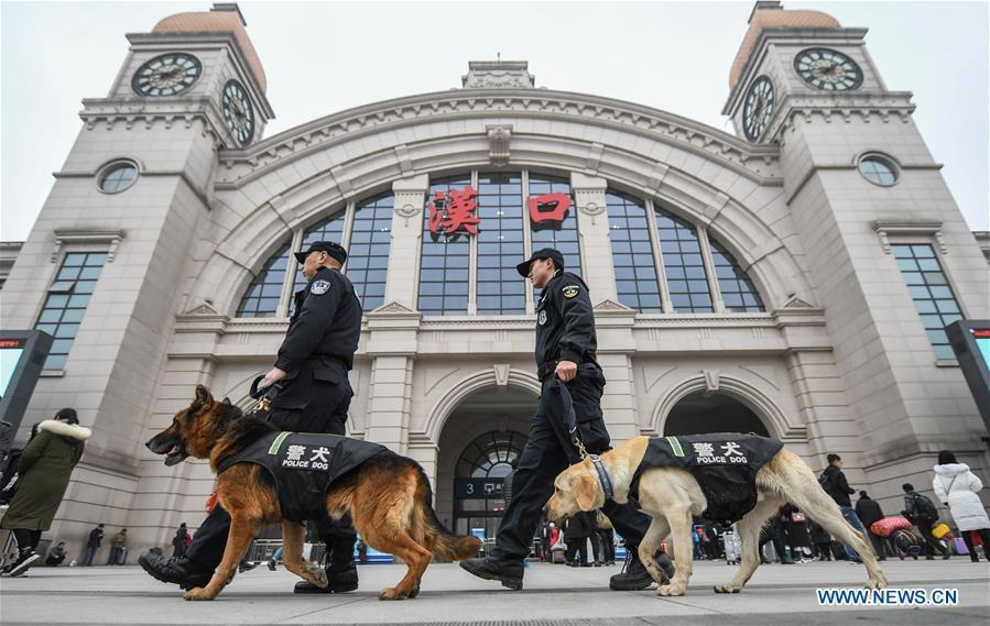 Police dogs \