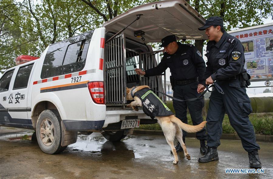 Police dog \
