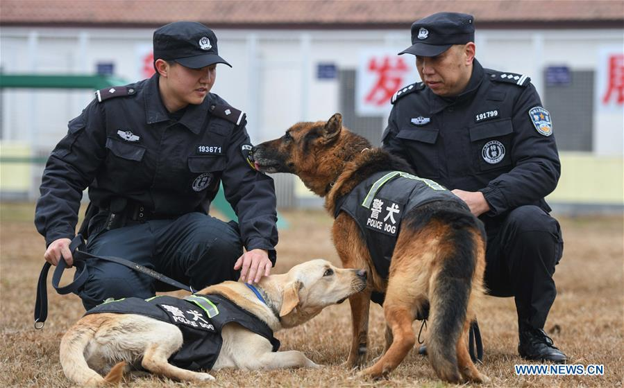 Wuhan railway policemen Ding Yan (L) and Zhang Ning train police dogs \