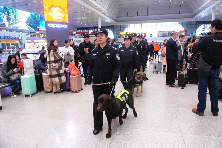 Police dog Hao Ke starts its first service during the Spring Festival travel rush at a railway station in Nanning City, South China's Guangxi Zhuang Autonomous Region, Jan. 21, 2019. The police dog born on Nov. 27, 2015 has undergone 500 days of training that included searching for explosives. (Photo: China News Service/Jiang Xuelin)