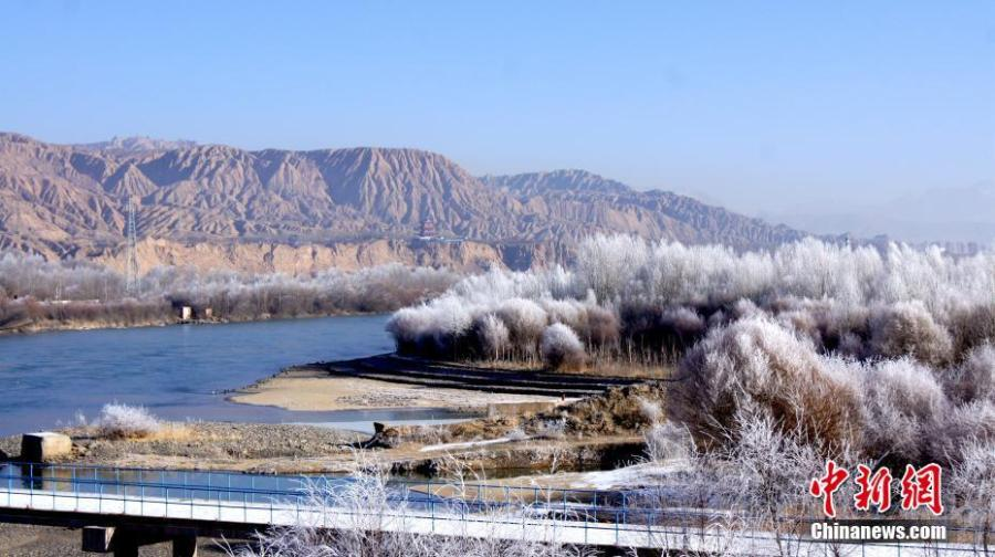 A hoar frost transforms the landscape along the bank of the Yellow River in Guide County, Northwest China\'s Qinghai Province, Jan. 21, 2019. Local temperatures dropped to minus 14.7 degrees. (Photo: China News Service/Wei Tao)