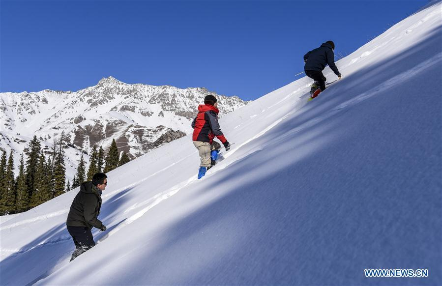 Researchers walk in snow in Hejing County, northwest China\'s Xinjiang Uygur Autonomous Region, Jan. 20, 2019. A nine-member research team with an average age under 30 from the Xinjiang Institute of Ecology and Geography under the Chinese Academy of Sciences started a research on snow cover on the Tianshan Mountains in Xinjiang. Snow cover on the Tianshan Mountains is an important source of water resources. Snowmelt provides an abundant water supply for river flow in this area and also affects the ecological system of agricultural and animal husbandry production in the downstream oasis. (Xinhua/Hu Huhu)