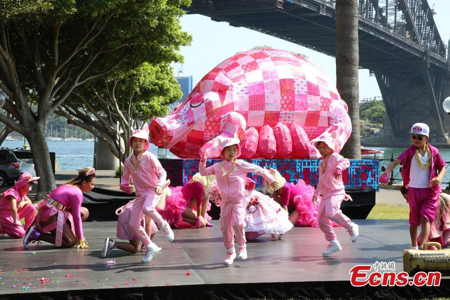 A preview of the 2019 Lunar New Year festivities in Sydney, Australia, Jan. 29, 2019. The 10-day festival which begins on Friday is the largest of its kind outside of Asia and according to authorities Sydneysiders will be treated to cultural delights centering around this year\'s zodiac sign, the pig. This year\'s events will include the largest dragon boat races in the southern hemisphere, culinary events, workshops, lion dancing and live cultural performances. (Photo: China News Service/Tao Shelan)