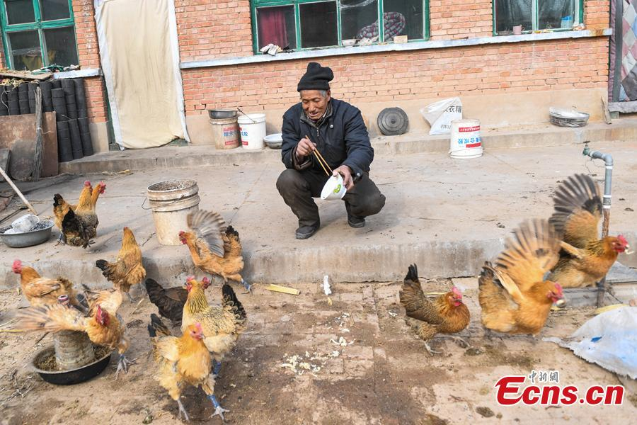 Li Tieliang, 69, feeds hens before returning to work as an extra in a TV drama being shot in Beishanyun Village in Yushe County, North China's Shanxi Province, Jan. 24, 2019. The village has more than 30 well-preserved buildings from the Ming and Qing dynasties, making it a good location to shoot historical film and TV dramas. In recent years, many locals have migrated to other places, while some remaining farmers have found work as extras. Li and his wife survive by farming, while their children work in other cities. Li now works part-time as an extra and earns about 100 yuan ($14) a day. (Photo: China News Service/Wu Junjie)