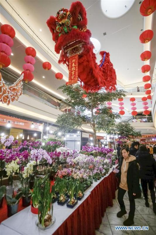 People shop for plants in preparing for the upcoming Chinese Lunar New Year at the 30th Chinese Lunar New Year Flower & Gift Fair in Richmond, Canada, Jan. 30, 2019. The seven-day Chinese Lunar New Year Flower & Gift Fair, west Canada\'s largest indoor Lunar New Year festivity, was opened on Tuesday. (Xinhua /Liang Sen)