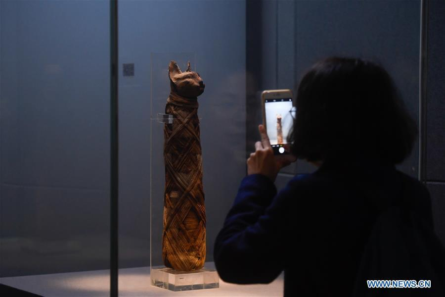 A visitor takes pictures of a cat mummy displayed in an exhibition of ancient Egyptian civilization at Zhejiang West Lake Gallery in Hangzhou, capital of east China\'s Zhejiang Province, Jan. 30, 2019. A total of 180 cultural relics from Italian museums are displayed in an exhibition of ancient Egyptian civilization from Jan. 22 to May 5, 2019. (Xinhua/Huang Zongzhi)