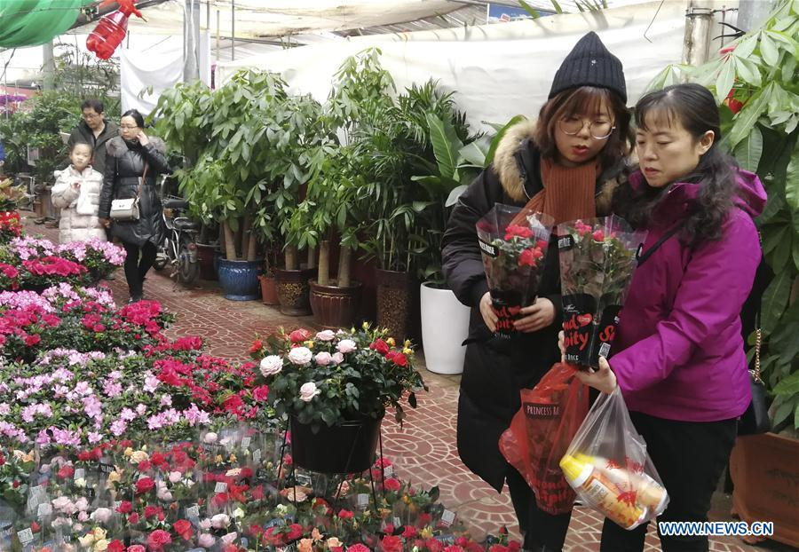 Customers select flowers at a flower market in Shijiazhuang, capital of north China\'s Hebei Province, Jan. 31, 2019. People in Shijiazhuang are busy buying flowers to decorate their home as a way to greet the upcoming Spring Festival, which falls on Feb. 5 this year. (Xinhua/Wang Baolong)
