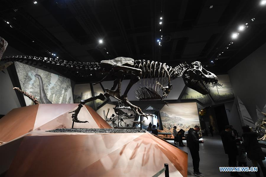 People visit the Anji Branch of Zhejiang Museum of Natural History in Anji County, east China\'s Zhejiang Province, Jan. 31, 2019. The museum attracts lots of visitors during the winter vacation. (Xinhua/Xu Yu)