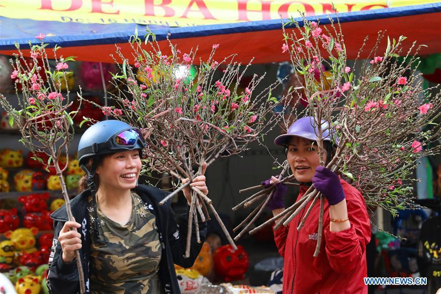 Vendors sell peach blossoms for the upcoming Lunar New Year in Hanoi, capital of Vietnam, Feb. 1, 2019. The Lunar New Year festival, also called Tet in Vietnamese, is one of the long-standing traditions of Vietnamese people. (Xinhua/Wang Di)