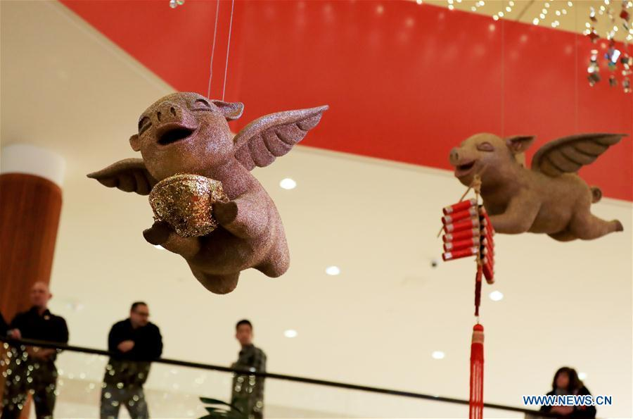 Decorations of the year of the pig are seen at a Chinese Lunar New Year celebration at South Coast Plaza in Costa Mesa, California, the United States, on Jan. 31, 2019. South Coast Plaza held a variety of activities such as dragon dance, lion dance, singing and dancing shows to celebrate the upcoming Chinese Lunar New Year. (Xinhua/Li Ying)