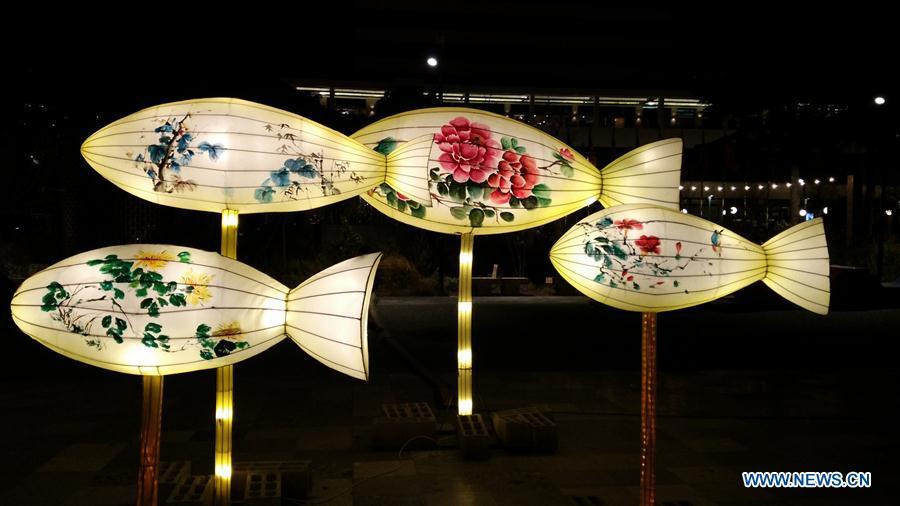 Fish-shaped lanterns are seen at the Chinese Lantern Festival in Tirana, capital of Albania, on Feb. 1, 2019. Albania joined the celebration of the Chinese New Year, with a ceremony marking the opening of \