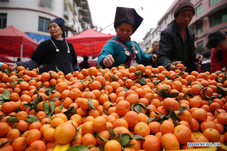 Customers select oranges at a local market in Danzhai County, southwest China\'s Guizhou Province, Jan. 31, 2019. People are busy buying goods in Guizhou for the upcoming Spring Festival, which falls on Feb. 5 this year. (Xinhua/Huang Xiaohai)