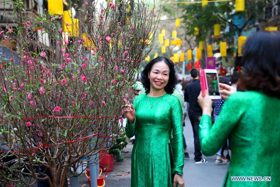 A woman pose for photos with peach blossoms for the upcoming Lunar New Year in Hanoi, capital of Vietnam, Feb. 1, 2019. The Lunar New Year festival, also called Tet in Vietnamese, is one of the long-standing traditions of Vietnamese people. (Xinhua/Wang Di)