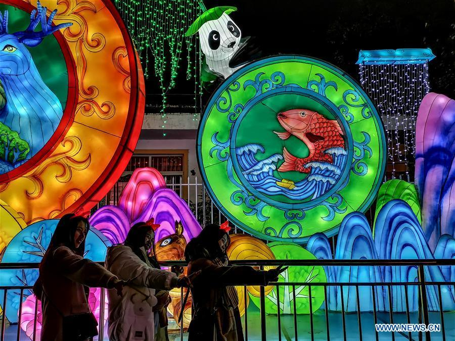 Tourists pose for photos in front of lanterns during a lantern fair held in Zigong, southwest China\'s Sichuan Province, Feb. 5, 2019. Over 130 lantern groups were displayed at the event. (Xinhua/Zhang Chaoqun)