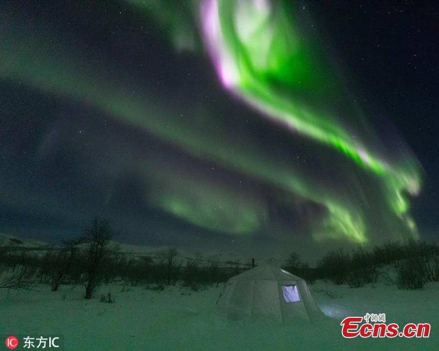 A photo taken in Abisko, Sweden shows the stunning northern lights look like a phoenix in the sky. (Photo/IC)