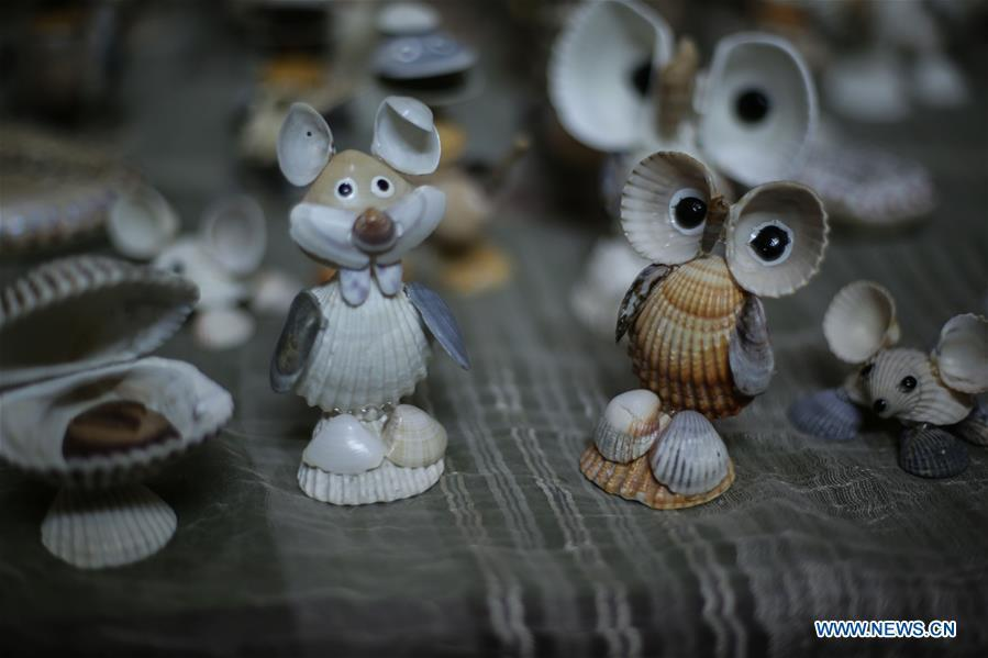 Photo shows art pieces made by Palestinian young man Ahmed al-Madhoun with seashells at his house in Gaza City, on Feb. 10, 2019. A Palestinian young man from Gaza turns seashells into beautiful artifacts that adorn his home to satisfy his passion for this type of art. Using seashells he collects from Gaza beaches, 31-year-old Ahmed al-Madhoun makes various art pieces such as animals, birds and some funny characters. Al-Madhoun, who holds a college degree in radio and television engineering and works for a local telecommunication company, has been collecting multiple forms of seashells from the Gaza seashore for more than four years. The young man began the hobby of seashell art about a year and a half ago, and he already made large numbers of art pieces.  (Xinhua/Stringer)