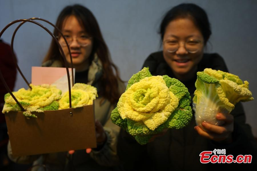 Students package a new breed of Chinese cabbage, developed by Professor Hou Xilin, at the College of Horticulture, Nanjing Agricultural University, Feb. 13, 2019. Students have launched a start-up to market the Chinese cabbage, which is smaller in size, rose-shaped and better tasting, both online and offline. (Photo: China News Service/Yang Bo)