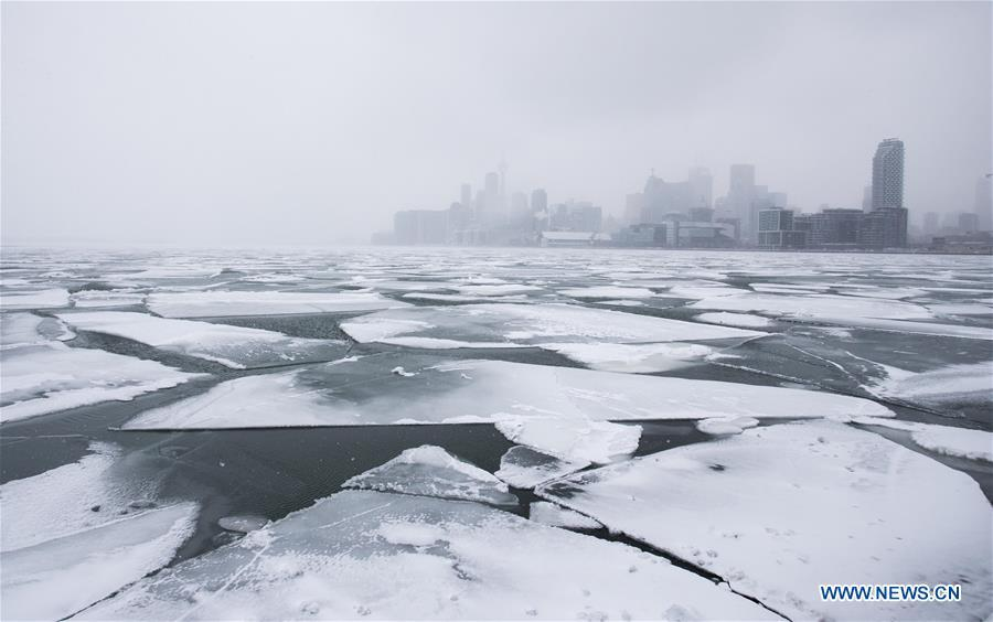 Toronto skyline is seen with floating ice on Lake Ontario in Toronto, Canada, on Feb. 13, 2019. A winter storm of a mix of snow, freezing rain and strong winds hit the Greater Toronto Area from Tuesday to Wednesday. (Xinhua/Zou Zheng)