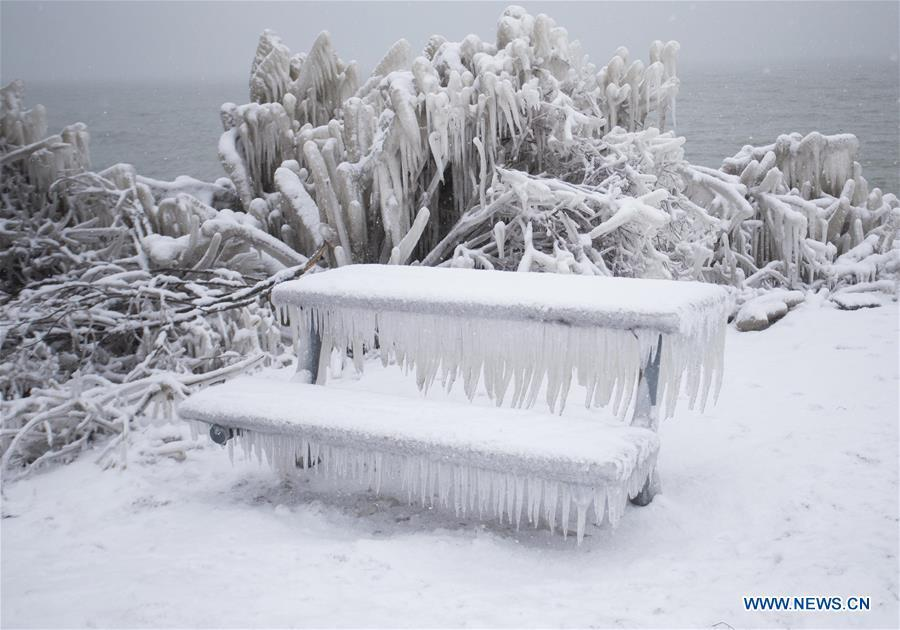 An ice-covered bench is seen near Lake Ontario in Toronto, Canada, on Feb. 13, 2019. A winter storm of a mix of snow, freezing rain and strong winds hit the Greater Toronto Area from Tuesday to Wednesday. (Xinhua/Zou Zheng)