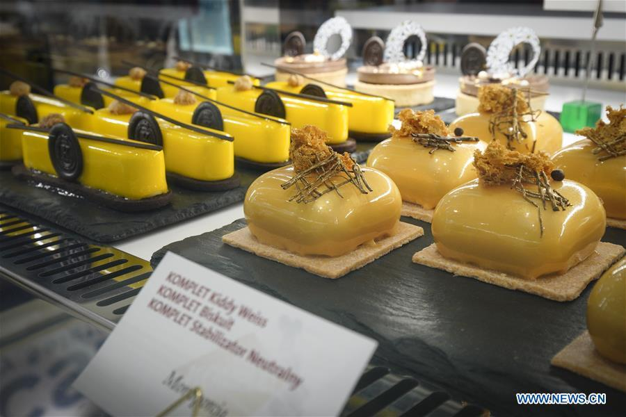 Various kinds of desserts are seen on display at the Expo Sweet in Warsaw, Poland, on Feb. 17, 2019. Expo Sweet, one of the largest confectionery and ice-cream fairs in Poland, is held in Warsaw from Feb. 17 to 20. (Xinhua/Jaap Arriens)
