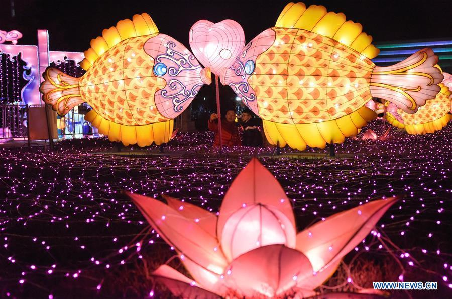 People view colorful lanterns at a relic park in Handan, north China\'s Hebei Province, Feb. 17, 2019. With the approaching of the Lantern Festival, many places across the country are decorated by colorful lanterns. (Xinhua/Hao Qunying)