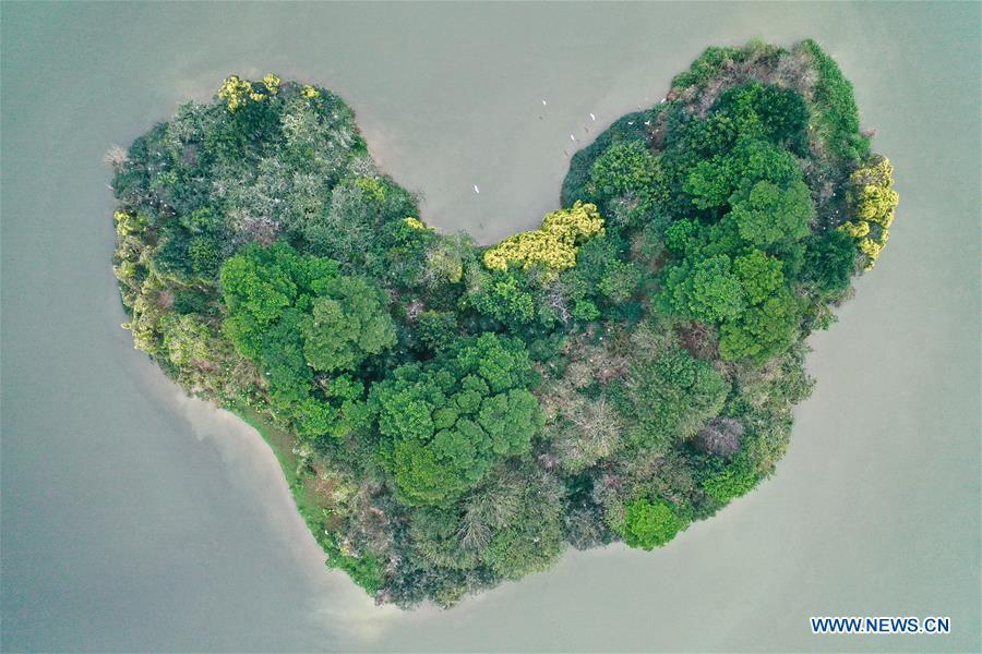 <?php echo strip_tags(addslashes(Aerial photo taken on Feb. 21, 2019 shows a heart-shaped island which is the habitat of various bird species at Bihu ecological park in Zhangzhou, southeast China's Fujian Province. (Xinhua/Jiang Kehong))) ?>
