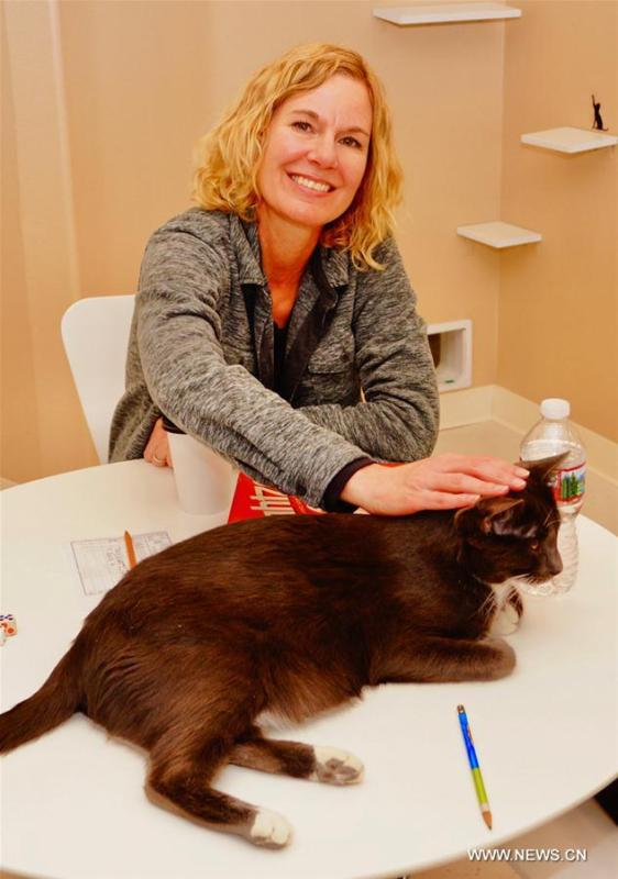 A customer interacts with a cat at Catopia Cat Cafe in Albuquerque, New Mexico, the United States on Feb. 24, 2019. Customers at Catopia Cat Cafe, having only been open for a few months in Albuquerque in the U.S. state of New Mexico, can spend as much time as they want with about a dozen adoptable cats while having coffee and browsing the web. Internet coffee shops that have cats up for adoption is a new trend in the United States today, and there are about one hundred cat cafes around the country. (Xinhua/Richard Lakin)