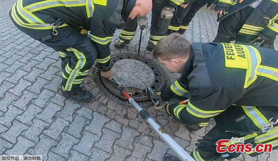Nine rescue workers in the German town of Bensheim have saved a rat with \