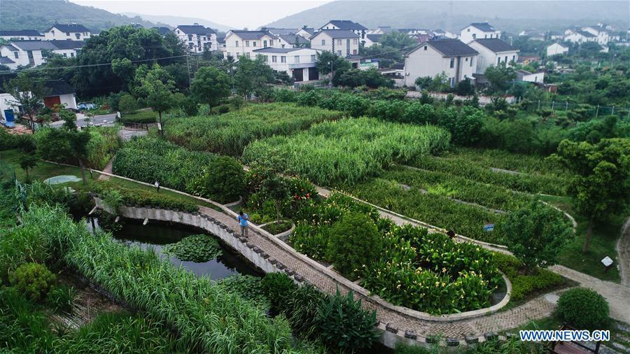 Staff members check water quality at an ecological pond at Jinting Township of Suzhou City, east China\'s Jiangsu Province, July 4, 2018. As \