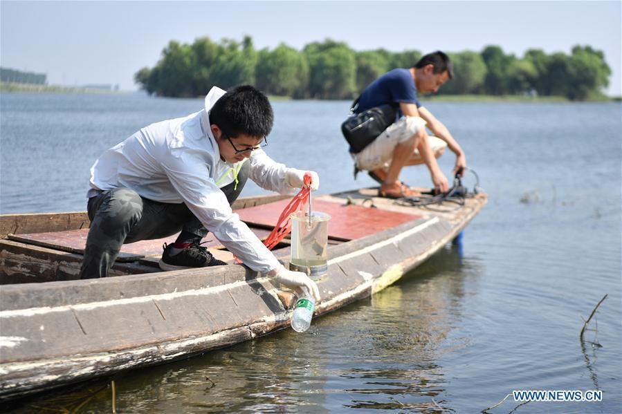 Geng Mingming (L), a scientific staff member, takes sample of lake water in Dongting Lake area, central China\'s Hunan Province, Aug. 25, 2018. As \
