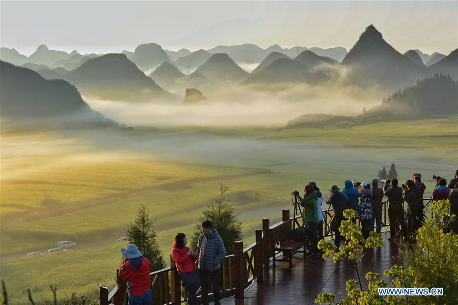 Tourists take photos of the cole flower fields at Luoping County, southwest China\'s Yunnan Province, Feb. 19, 2019. As \