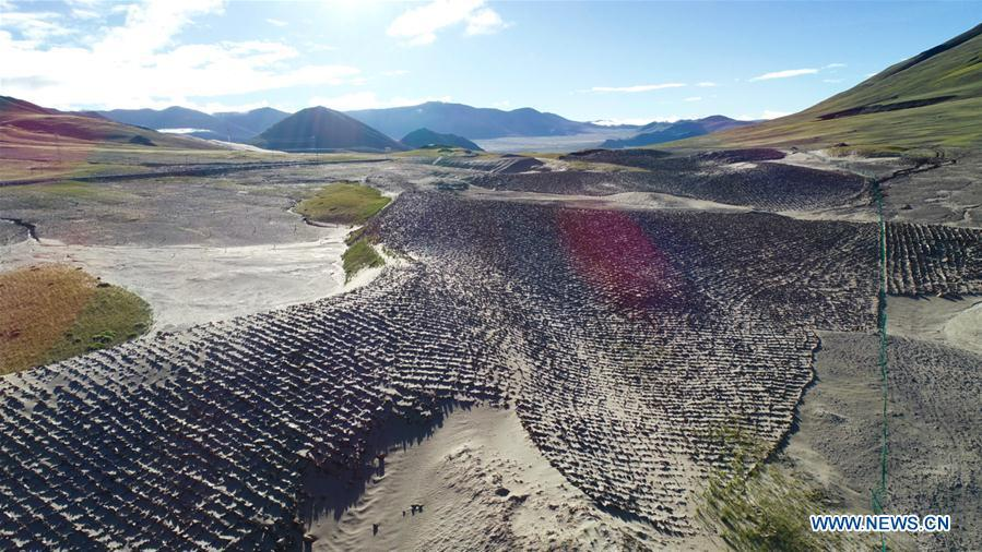 Aerial photo taken on Sept. 8, 2018 shows solidified sand dunes near the source of the Yarlung Zangbo River in Zhongba County of Xigaze, southwest China\'s Tibet Autonomous Region. As \