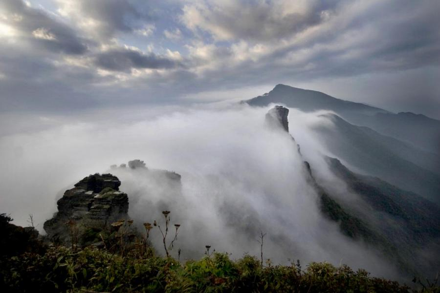 Fanjing mountain is home to an array of wildlife.  (Photo provided to chinadaily.com.cn)