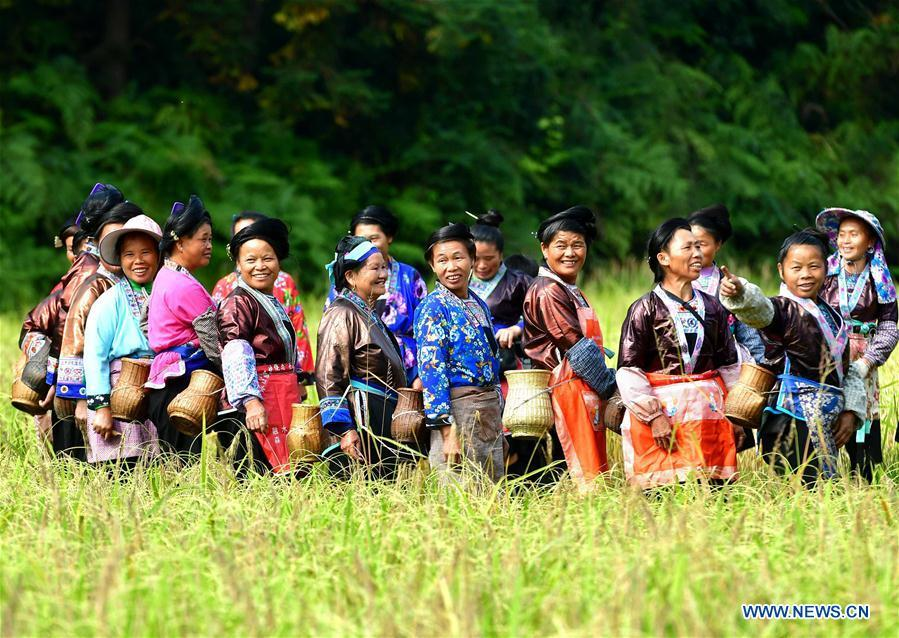 Farmers of Miao ethnic group attend a crop reaping contest during a purple glutinous rice cultural festival in Dali Village of Liangzhai Township in Rongshui Miao Autonomous County, south China\'s Guangxi Zhuang Autonomous Region, Oct. 12, 2018. China\'s efforts and success in poverty reduction can help other developing nations, said experts observing the country\'s ongoing Two Sessions. The Two Sessions refer to the annual gatherings of the National People\'s Congress (NPC) and the National Committee of the Chinese People\'s Political Consultative Conference, China\'s top legislature and political advisory body respectively. China has emerged as a global role model with efforts in structural transformation and industrial upgrading, lifting hundreds of millions of people out of poverty, said retired Lieutenant Colonel Muhammad Faruk Khan, a presidium member of Bangladesh\'s ruling Awami League. (Xinhua/Huang Xiaobang)