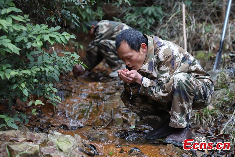 Zhang Zhong (front) and his brother Zhang Hua, two of three triplet brothers, drink water from a river while on patrol in the Gonglongping state-owned tree farm in Bijie City, Guizhou Province, March 10, 2019. Influenced by their father, the three brothers began to work as rangers in the farm in 1981. The tree farm covers an area of 53,300 mu (3,553 hectares) and the brothers usually walk approximately 30 kilometers on average per working day. Guizhou has about 3,000 registered rangers who work in tree farms totalling 5.55 million mu. (Photo: China News Service/Qu Honglun)