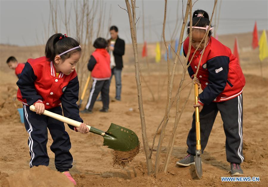 Children plant trees at Wuzhong Village in Qiaoxi District of Xingtai City, north China\'s Hebei Province, March 11, 2019. Students from Guoshoujing Primary School took part in a tree-planting activity to greet the upcoming Tree Planting Day, also known as Arbor Day, which falls on March 12 each year. (Xinhua/Mu Yu)
