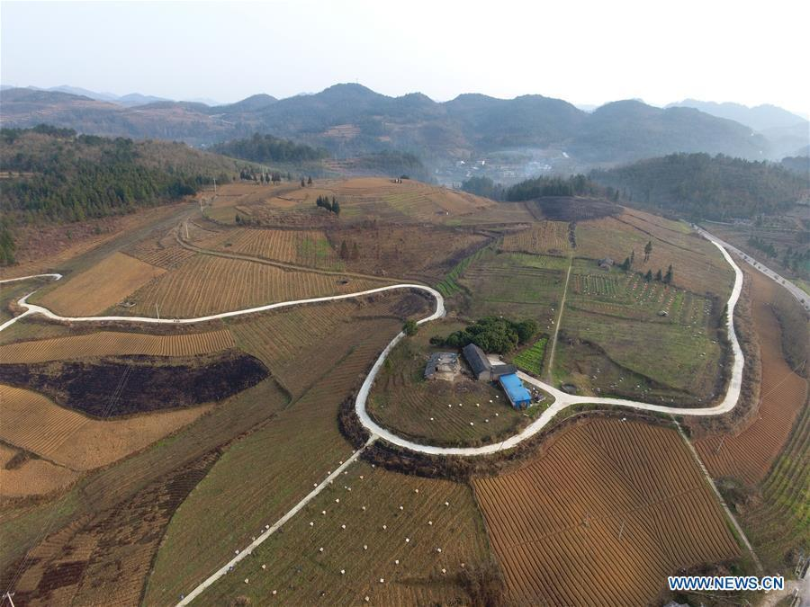 Aerial Photo taken on March 12, 2019 shows the winding concrete road at Xiangping Village of Luping Township in Fuquan City, Bouyei-Miao Autonomous Prefecture of Qiannan, southwest China\'s Guizhou Province. The concrete road project in Guizhou was launched in August, 2017. Up to now, Guizhou has seen 77,700 kilometers of rural roads built or renovated with nearly 40,000 villages connected by concrete roads. Tens of millions of rural people benefit from the project. (Xinhua/Xiao Wei)