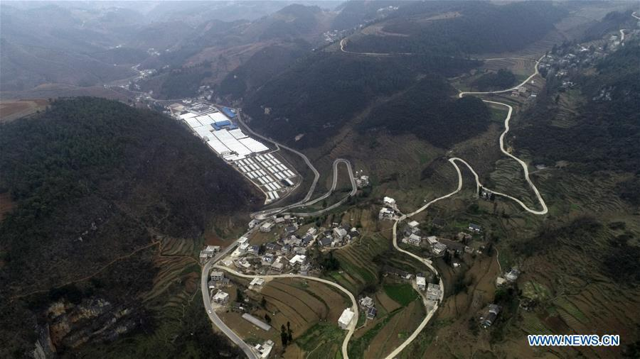 Aerial Photo taken on March 5, 2019 shows the winding concrete road at Xintian Village of Shuangping Township in Hezhang County, southwest China\'s Guizhou Province. The concrete road project in Guizhou was launched in August, 2017. Up to now, Guizhou has seen 77,700 kilometers of rural roads built or renovated with nearly 40,000 villages connected by concrete roads. Tens of millions of rural people benefit from the project. (Xinhua/Shang Yujie)